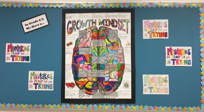 AHE Growth Mindset – 2019